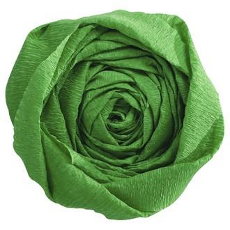 CLAIREFONTAINE - Papier crépon vert pré 2,50x0,50m