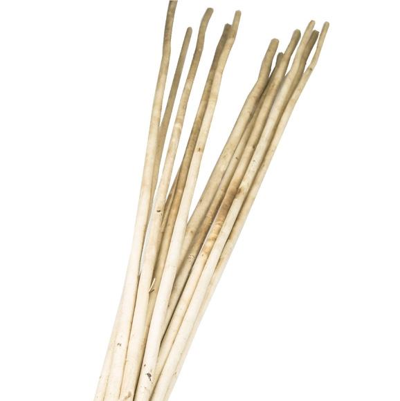 Achat en ligne Branchage kamboi stick naturel 100cm