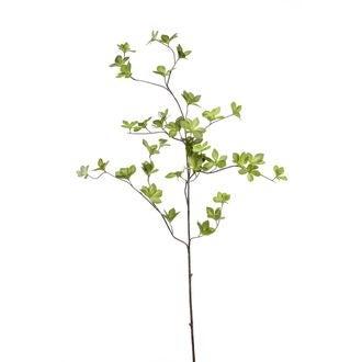 Branche de feuilles de cornus vertes 115cm