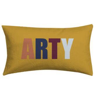 Coussin arty multico pratique artistique 30x50cm