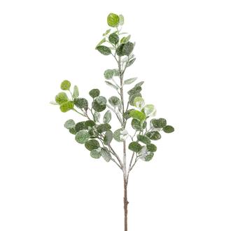 Branche d'eucalyptus enneigée et pailletée 80cm