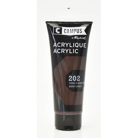 Achat en ligne Peinture acrylique terre d'ombre en tube 100 ml