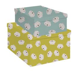 Achat en ligne Lot de 2 boites en carton moutarde 35x27 et bleu 29x21