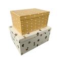 Set di 2 scatole di cartone