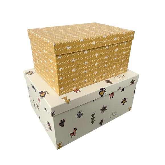 acquista online Set di 2 scatole di cartone