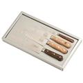 Set di 4 coltelli da cucina con lama in inox e manico in legno