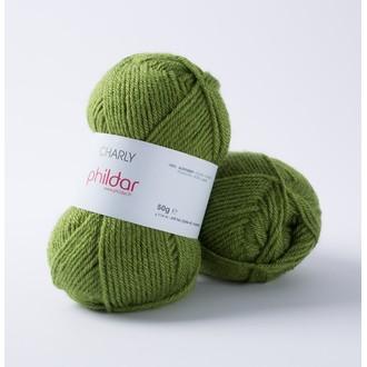 PHILDAR - Pelote de laine Charly gazon - 50g