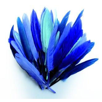 Plumes d'indien camaieu bleu 15cm 10gr