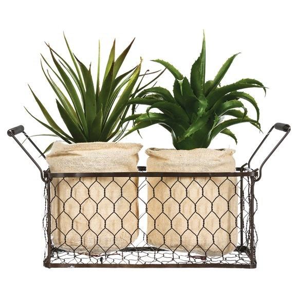 Achat en ligne Set de 2 plantes avec panier