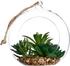 Vase boule en verre à suspendre avec plante d14xh17cm