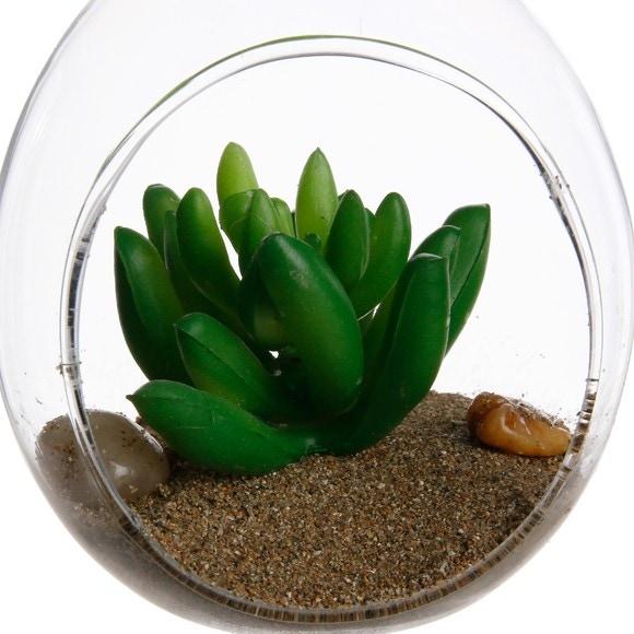 Boule en verre avec une plante grasse à suspendre 8x9cm