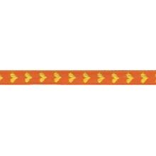 Achat en ligne Bobine de galon à cœur orange 2 m