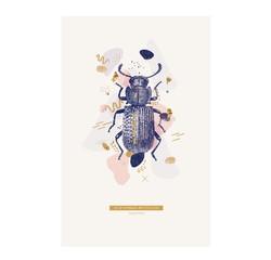 Achat en ligne Affiche scarabé 40x50cm