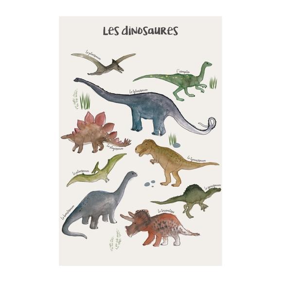 Achat en ligne Affiche les dinosaures k.marlier 50x70cm