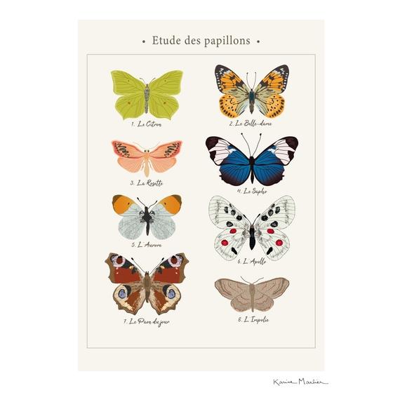 Achat en ligne Affiche les papillons k.marlier 30x40cm