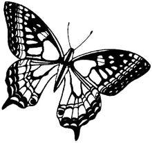 Achat en ligne Tampon papillon
