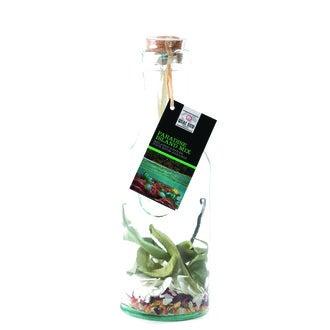 QUAI SUD - Mélange cocktail en carafe Paradise Island mix