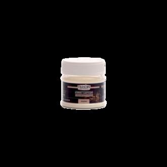 TRESORS DE CHEFS - Gomme xanthane 30g