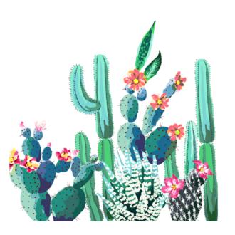 20 Serviettes papiers cactus aquarelle 33x33cm