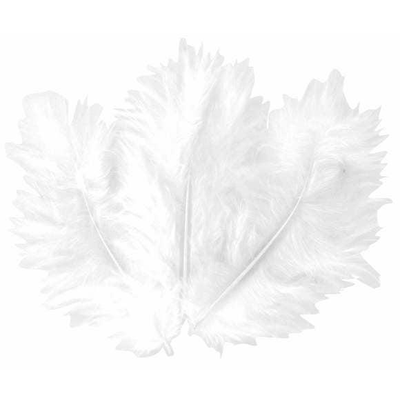 Achat en ligne Indispensables 50 plumes blanches 10cm