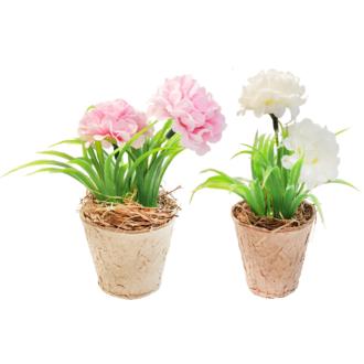 Fleur en pot rose ou blanche