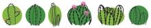 Achat en ligne Washi Tape Cactus Family