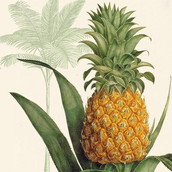 20 serviettes 33x33cm Ananas Tropical