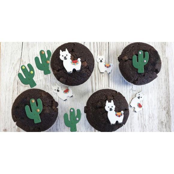 Achat en ligne 6 décors sucre cactus 17g