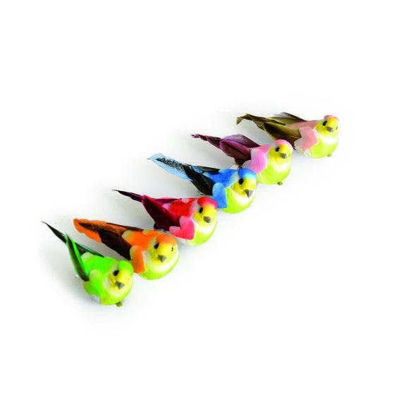 Set 6 uccelli miniature colori assortiti 5x2cm