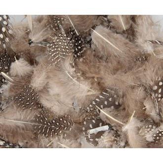 ARTEMIO - Set de 20 plumes duvetées naturelles en pot 3 g