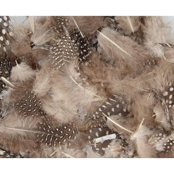 Achat en ligne Set de 20 plumes duvetées naturelles en pot 3 g