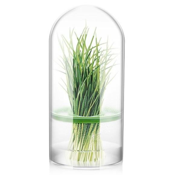 Contenitore per erbe aromatiche