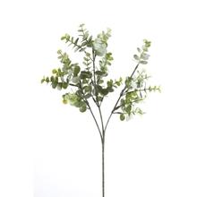 Achat en ligne Branche artificielle d'eucalyptus ramifie gris et vert H65cm