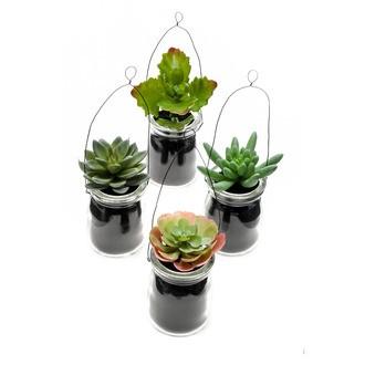 Plante succulente artificielle en pot à suspendre H11cm