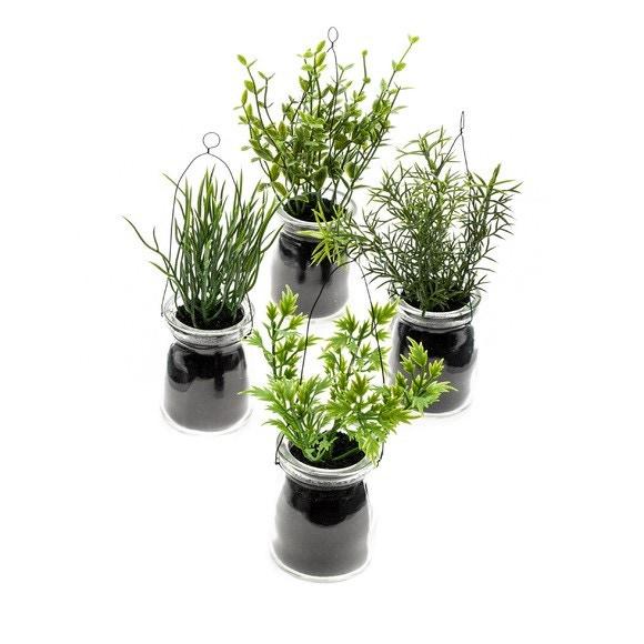 Achat en ligne Herbes en pot à suspendre 14cm