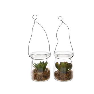 Plante grasse à suspendre 5,5x7cm