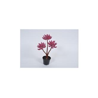 Succulente artificielle en pot noir rose/grenat
