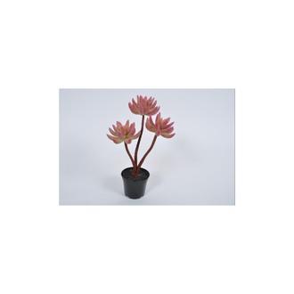 Succulente artificielle en pot noir rose/vert
