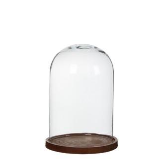 Cloche en verre avec socle en bois 30x21cm