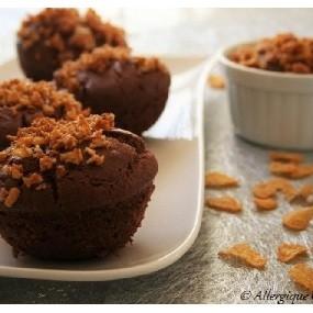 Moelleux au chocolat bio (sans oeuf, sans gluten)
