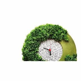 Horloge végétale diy en gomille