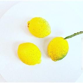 Délice citron gingembre