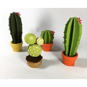 Mes macarons cactus