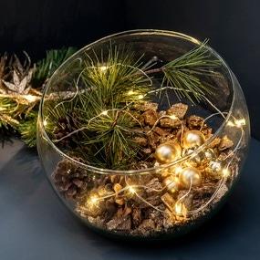 Mon terrarium de noël