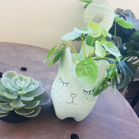 Tutoriel diy cache-pot chat en bouteille recyclée