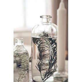 Flacons et vases végétaux