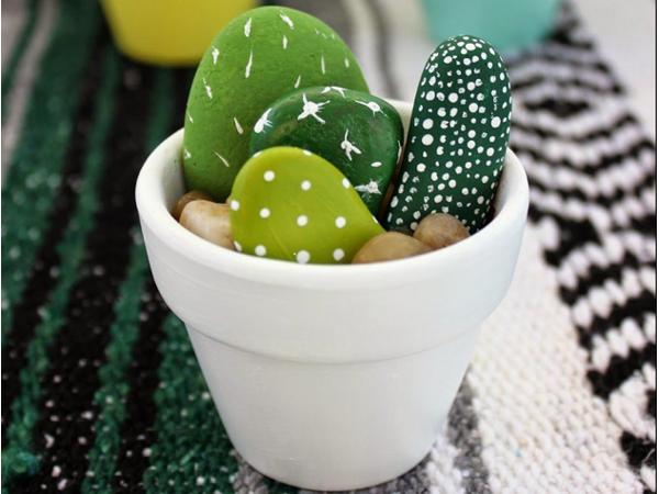 Le cactus sous toutes ses formes!