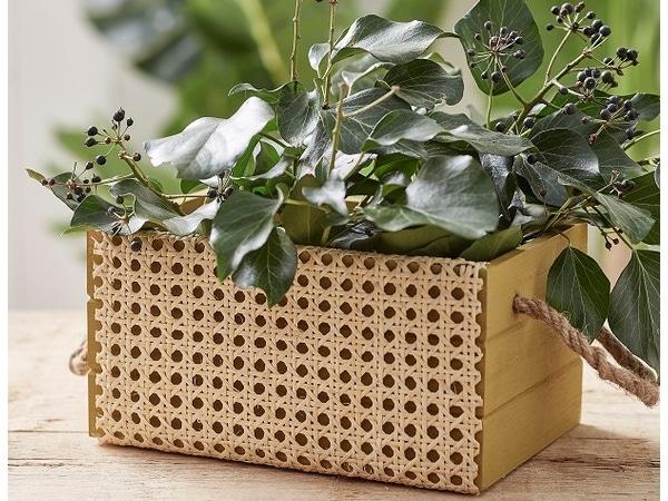 Per la decorazione delle tue piante ...